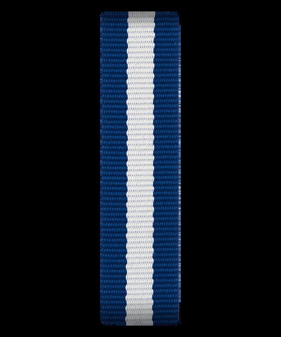 Blue/White Nylon Slip-thru Strap  large